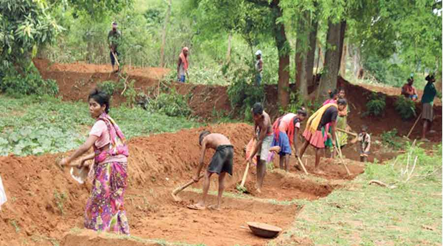 Official sources said during this period the government created six crore mandays under MGNREGA.