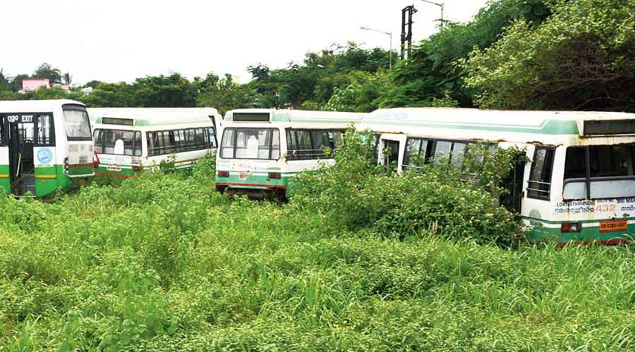 The Odisha government on Monday waived road tax for buses and contract carriages for June.