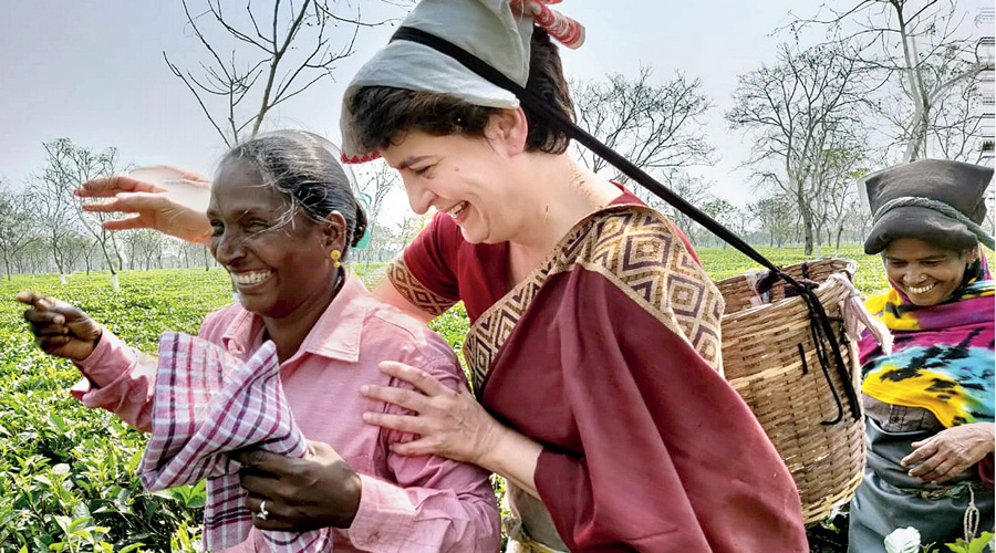 Priyanka Gandhi Vadra plucks tea leaves at the Sadhuru tea garden in Assam on Tuesday.