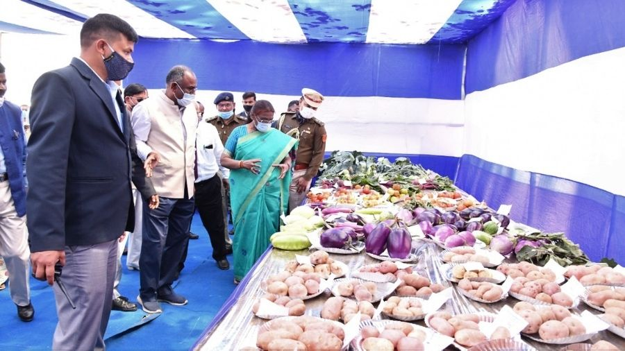 Governor Droupadi Murmu takes a look at the displays at the three-day agrotech fair in Ranchi on Friday.