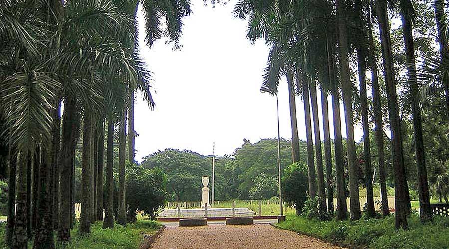 Indian Botanic Garden.