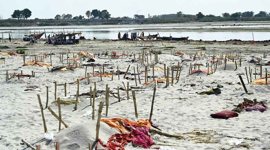 Bodies buried in the sand near the banks of the Ganga in Allahabad  on Saturday.
