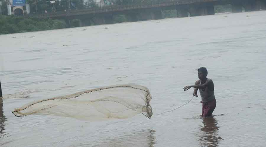 A fisherman throws his net in a swollen Subernarekha river in Jamshedpur on Thursday.