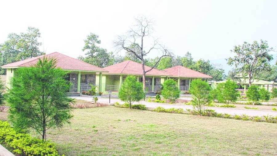 The air-conditioned cottages inside Dalma wildlife sanctuary.