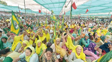 Women participate in the farmers' rally