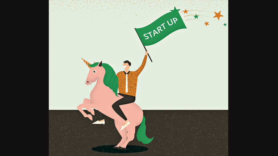 What do unicorns mean for the economy