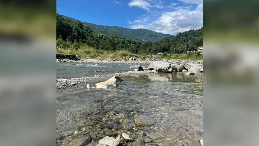 The perfect waterside picnic spot at Pala Khola