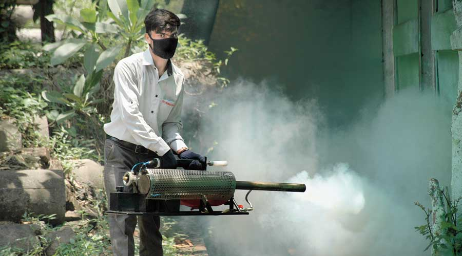 Jharkhand govt's timely preparations curbs dengue cases