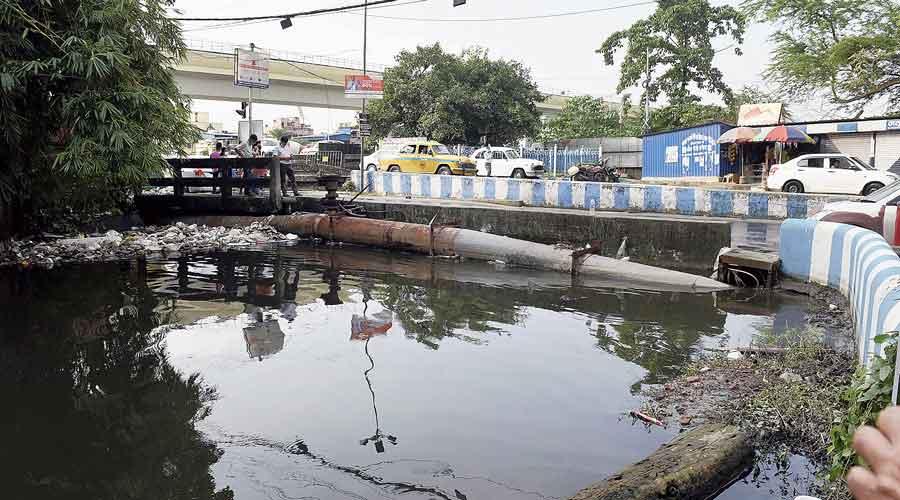 The Guniagachhi canal in Mukundapur that needs dredging.