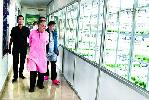 Herbal drug hub launched