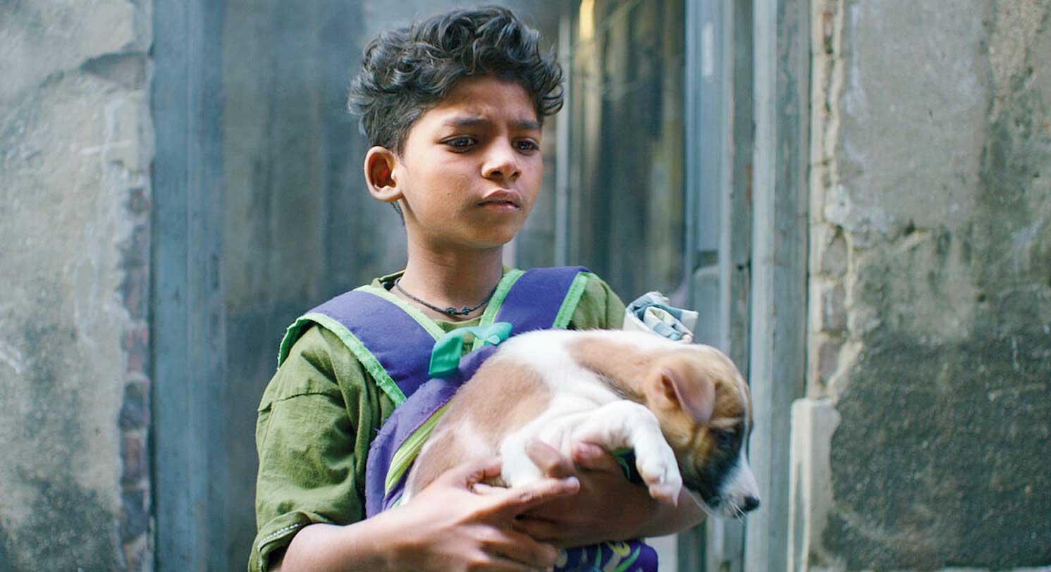 BOY WONDER: Sunny Pawar in Chippa, now streaming on Netflix