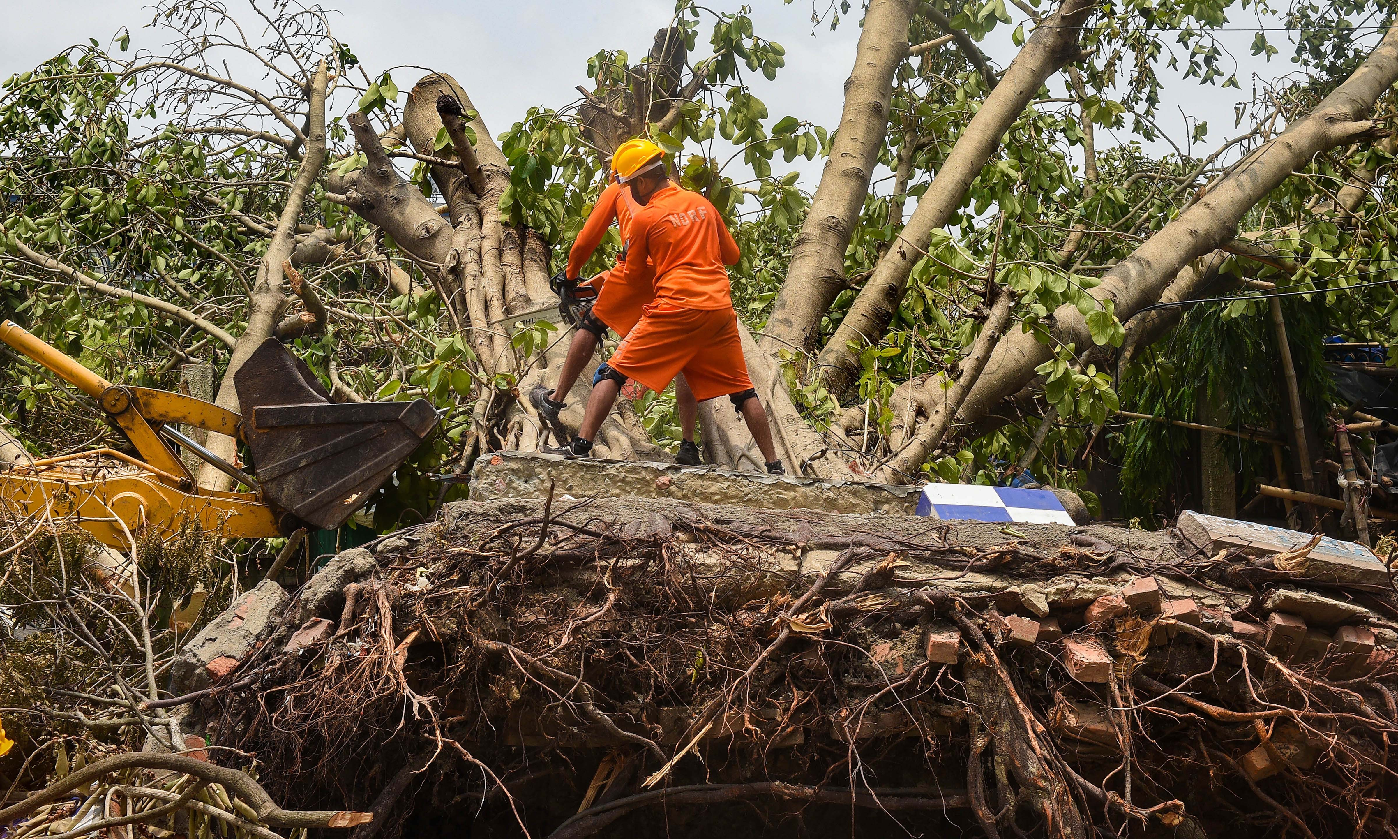 NDRF personnel work to clear an uprooted tree from a road, in the aftermath of Cyclone Amphan, in Calcutta, Wednesday, May 27, 2020