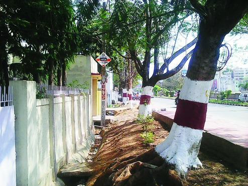 Harmu homes fear demolition