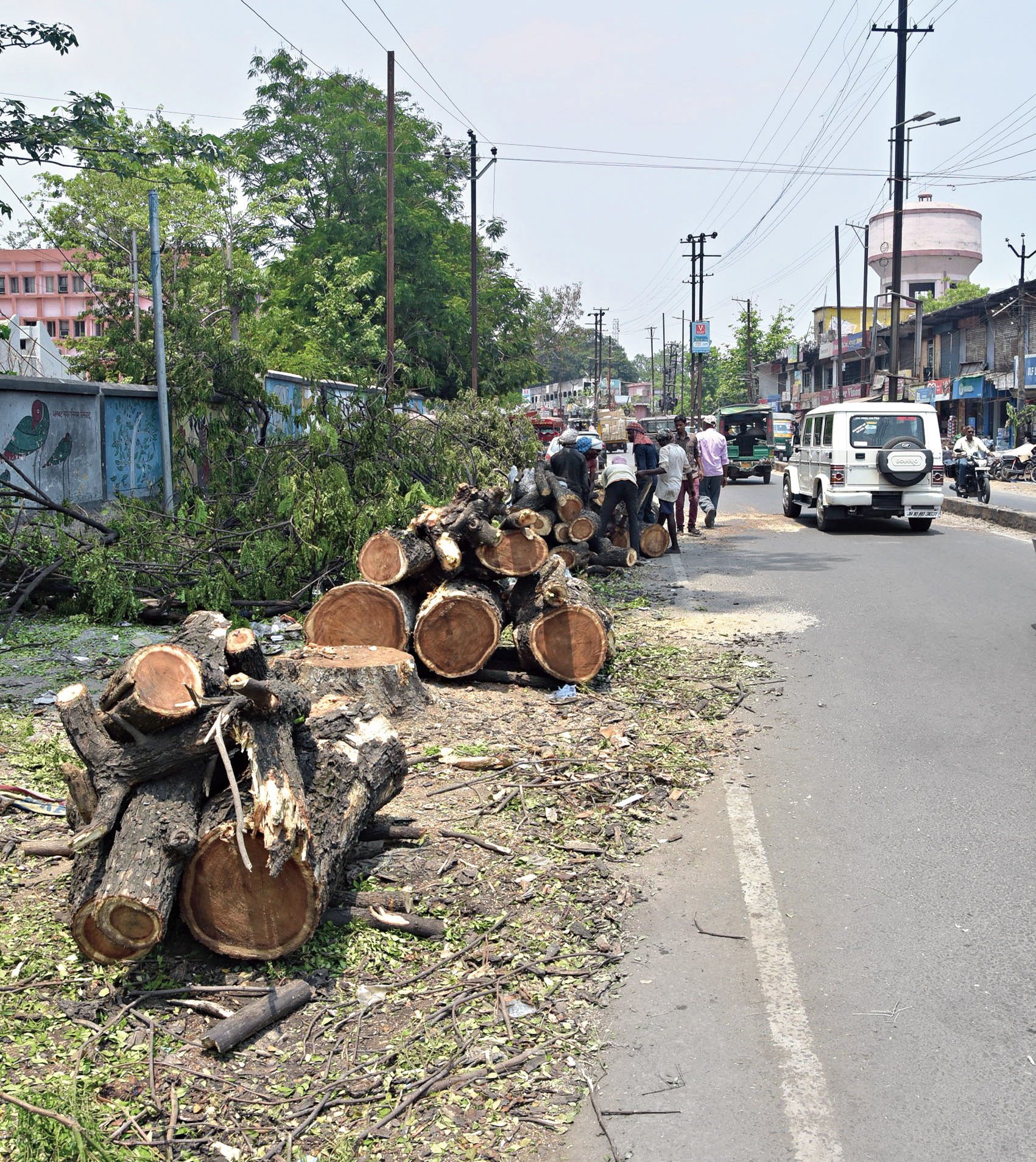 Chopped trees strewn along the road near Hatia Mor in Dhanbad last week.