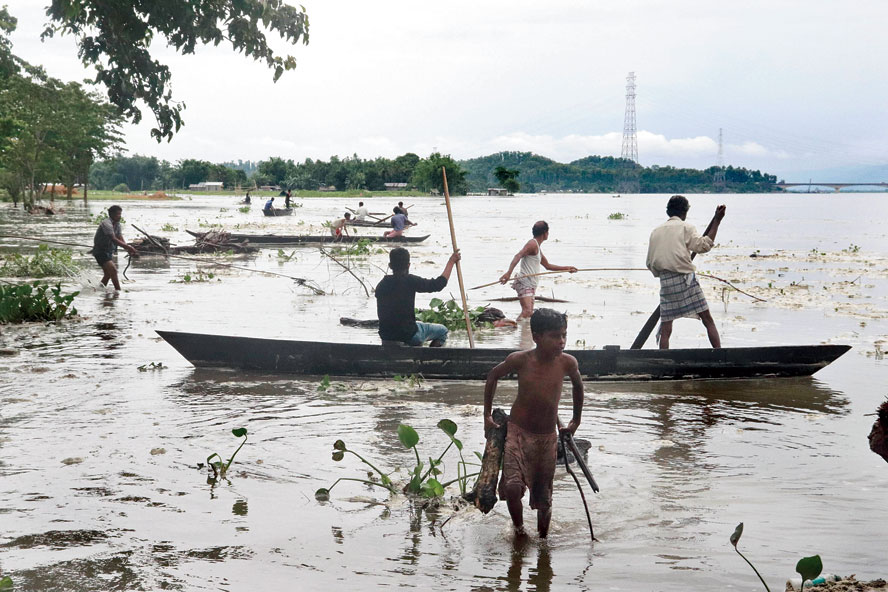 People collect firewood on the banks of Brahmaputra in Tezpur on Saturday.