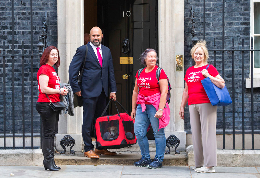 Eileen Jones, right, who runs Friends of Animals Wales and colleagues deliver a 15-week-old Jack Russell-cross puppy adopted by Britain's Prime Minister Boris Johnson and his partner Carrie Symonds arrives in Downing Street, London, Monday, September 2, 2019.