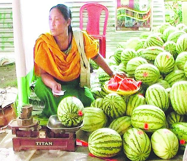 Watermelon Farming A Boon For Manipur Telegraph India