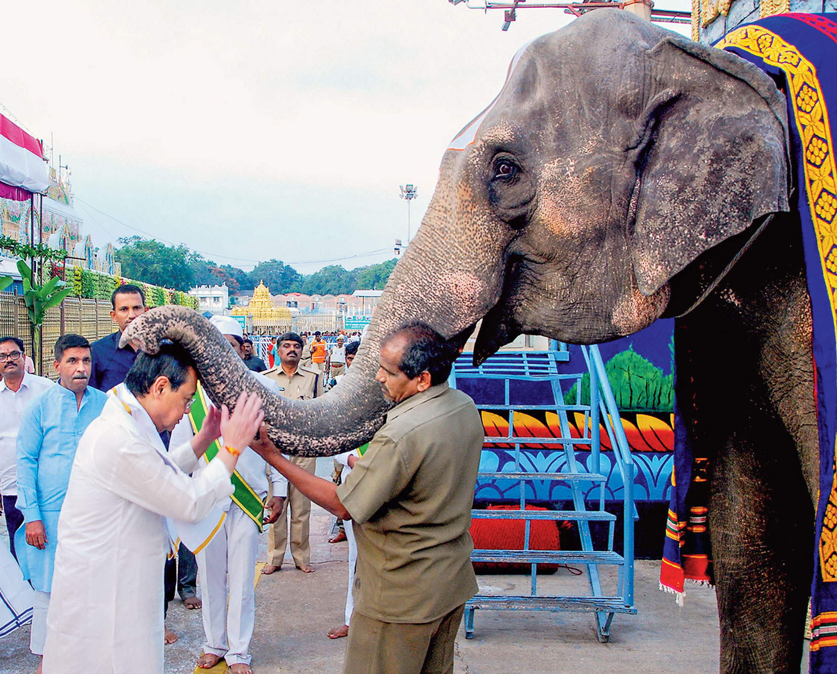 Outgoing Chief Justice of India Ranjan Gogoi, who headed the bench that delivered the Ayodhya verdict, seeks the blessings of an elephant at Tirupati temple on Saturday.