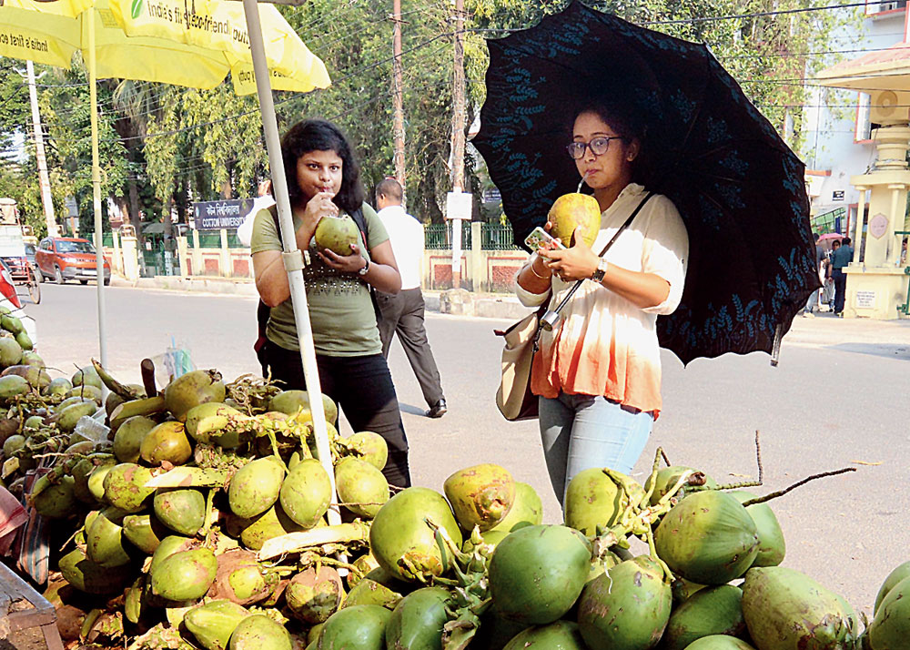 Girls drink coconut water on a hot summer day in Guwahati