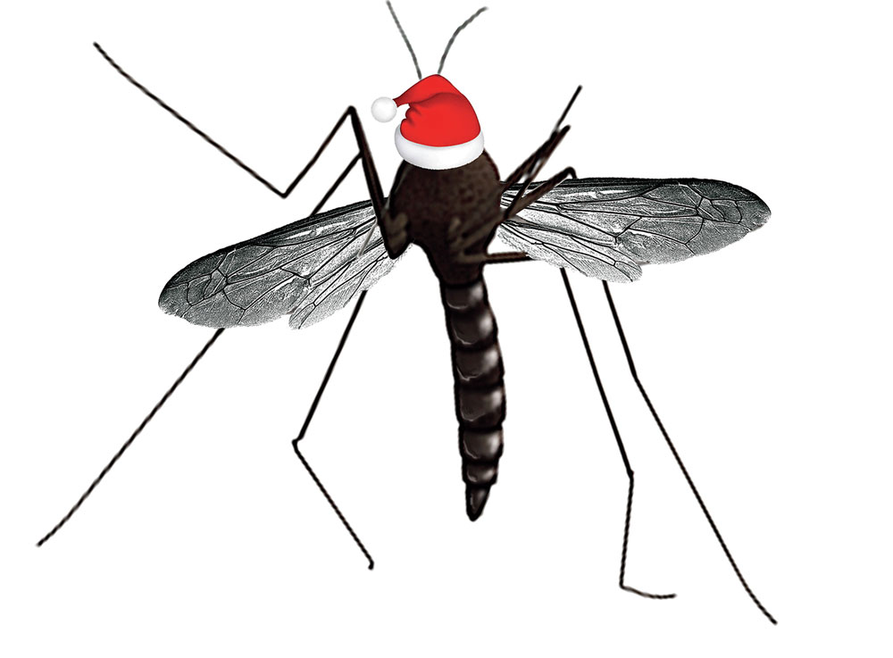 Santa Claws: For modern mosquitoes, it's Merry Christmas all year round