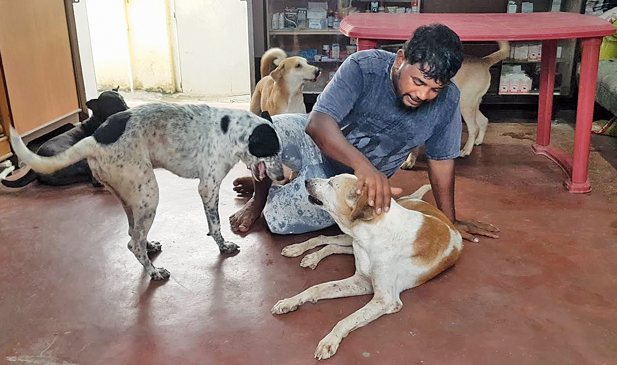 Sanjoy Mondal plays with the rescued dogs at his shelter.