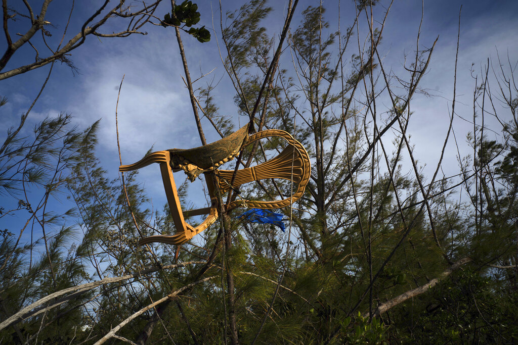 A chair is caught in a grove blown there by Hurricane Dorian's powerful winds, in Pine Bay, near Freeport, Bahamas, on Wednesday, Sept. 4, 2019
