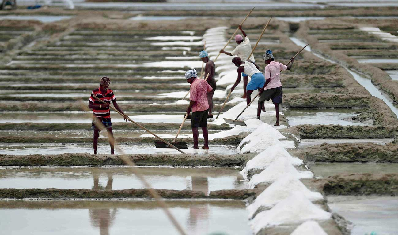 Labourers work at a salt pan in Tamil Nadu.