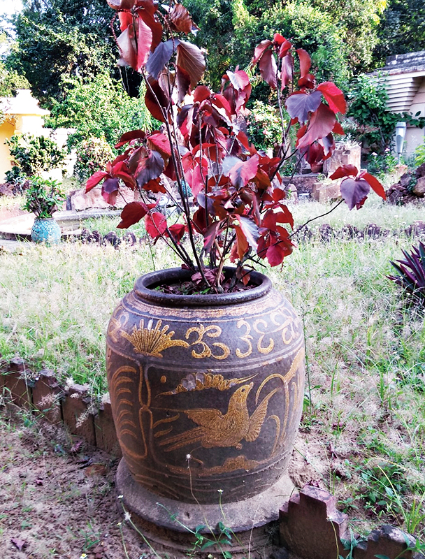 A porcelain vase at the Uttarayan complex in Santiniketan.