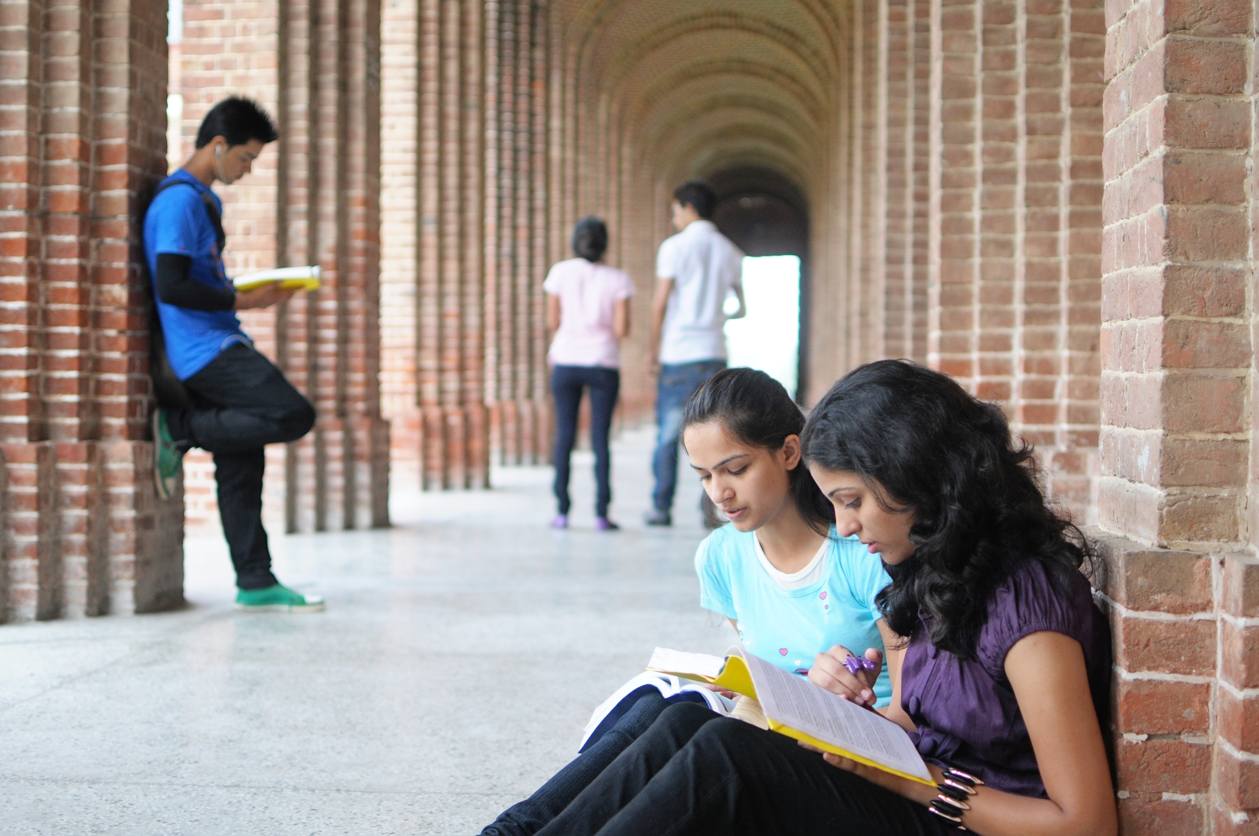 Tech courses take a hit as jobs shrink
