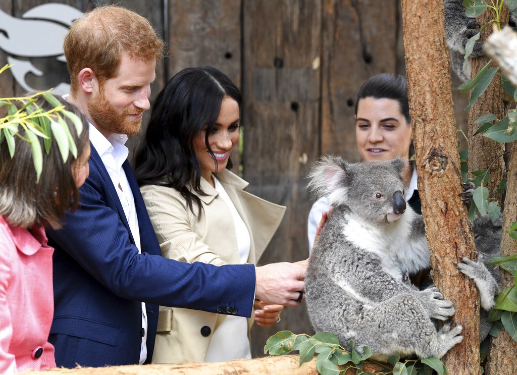 Harry and Meghan meet Ruby a mother Koala who gave birth to koala joey called Meghan and a second joey named Harryat the Taronga Zoo in Sydney.