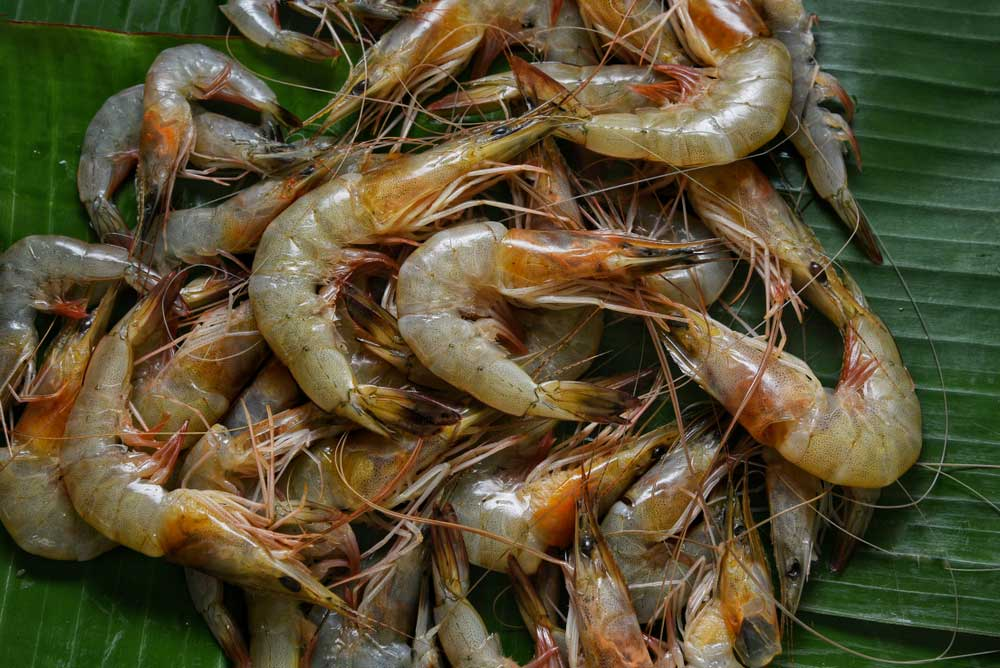 India produces seven lakh tonnes of prawn a year, 42 per cent of which is exported to the US. Industry stakeholders now fear a dip in export because of the magnitude of the coronavirus outbreak in the US and the European countries.