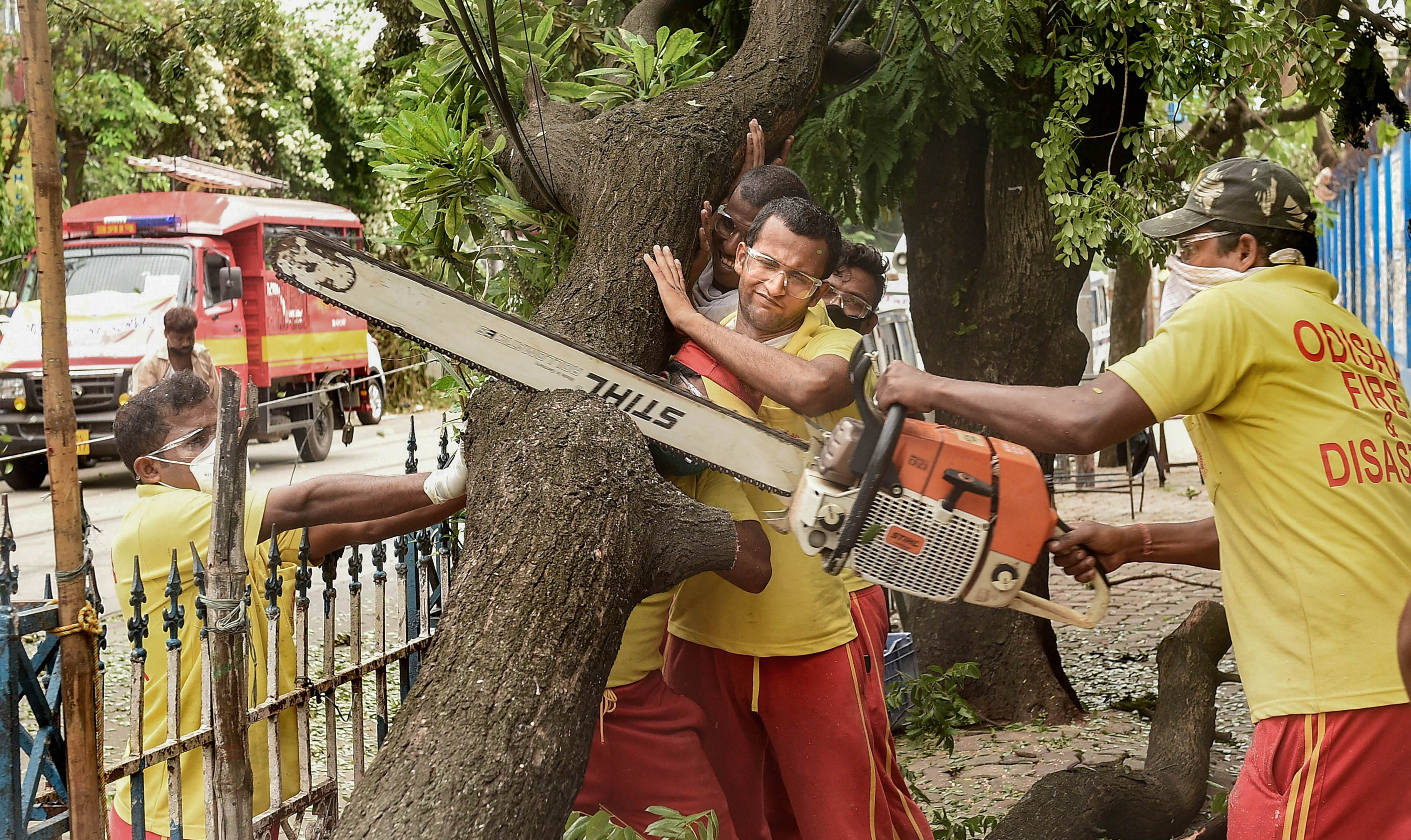 Odisha Fire and Disaster personnel cut an uprooted tree to clear a road, in the aftermath of cyclone Amphan, in Calcutta, Monday, May 25, 2020