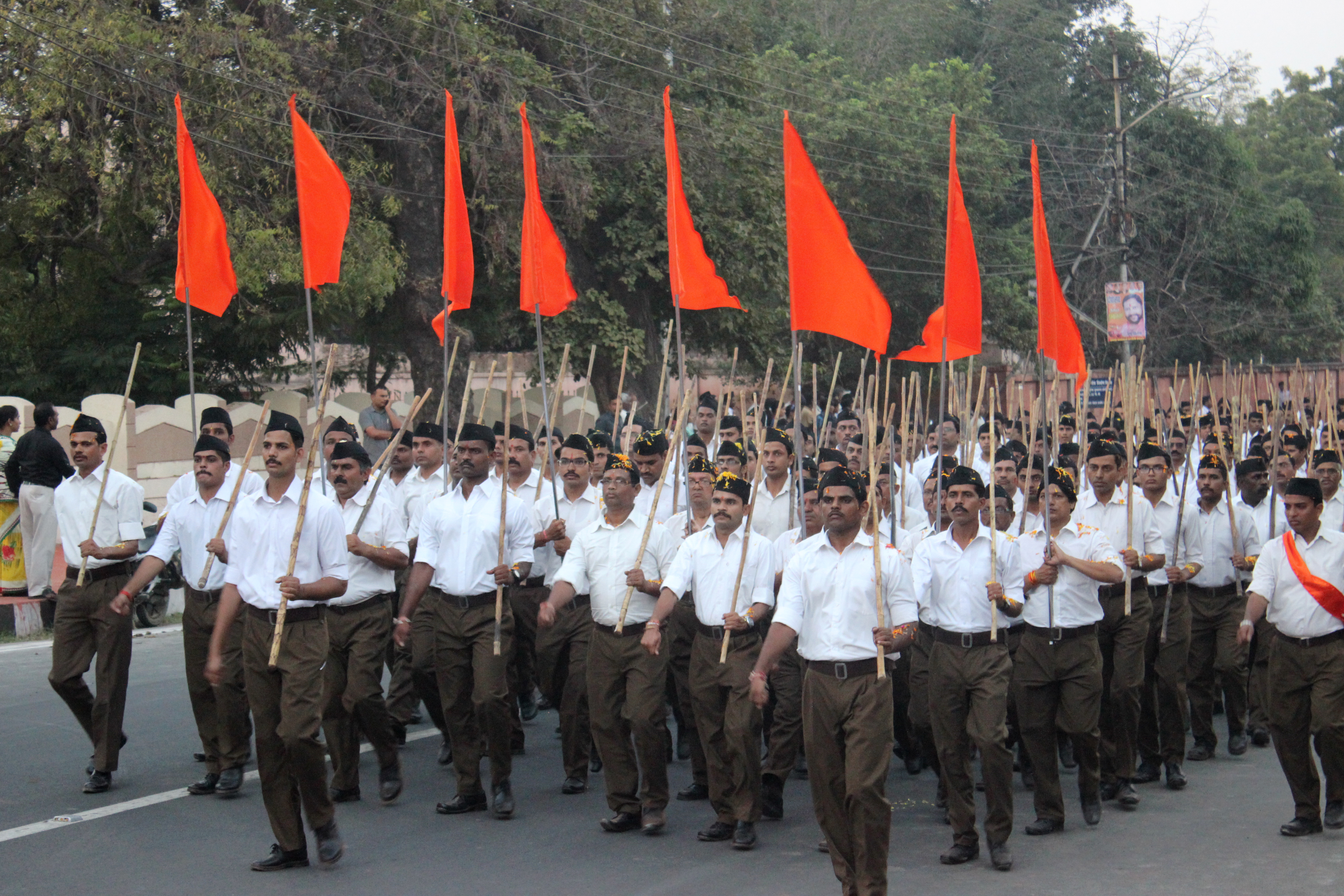 The RSS: Probing beneath the surface