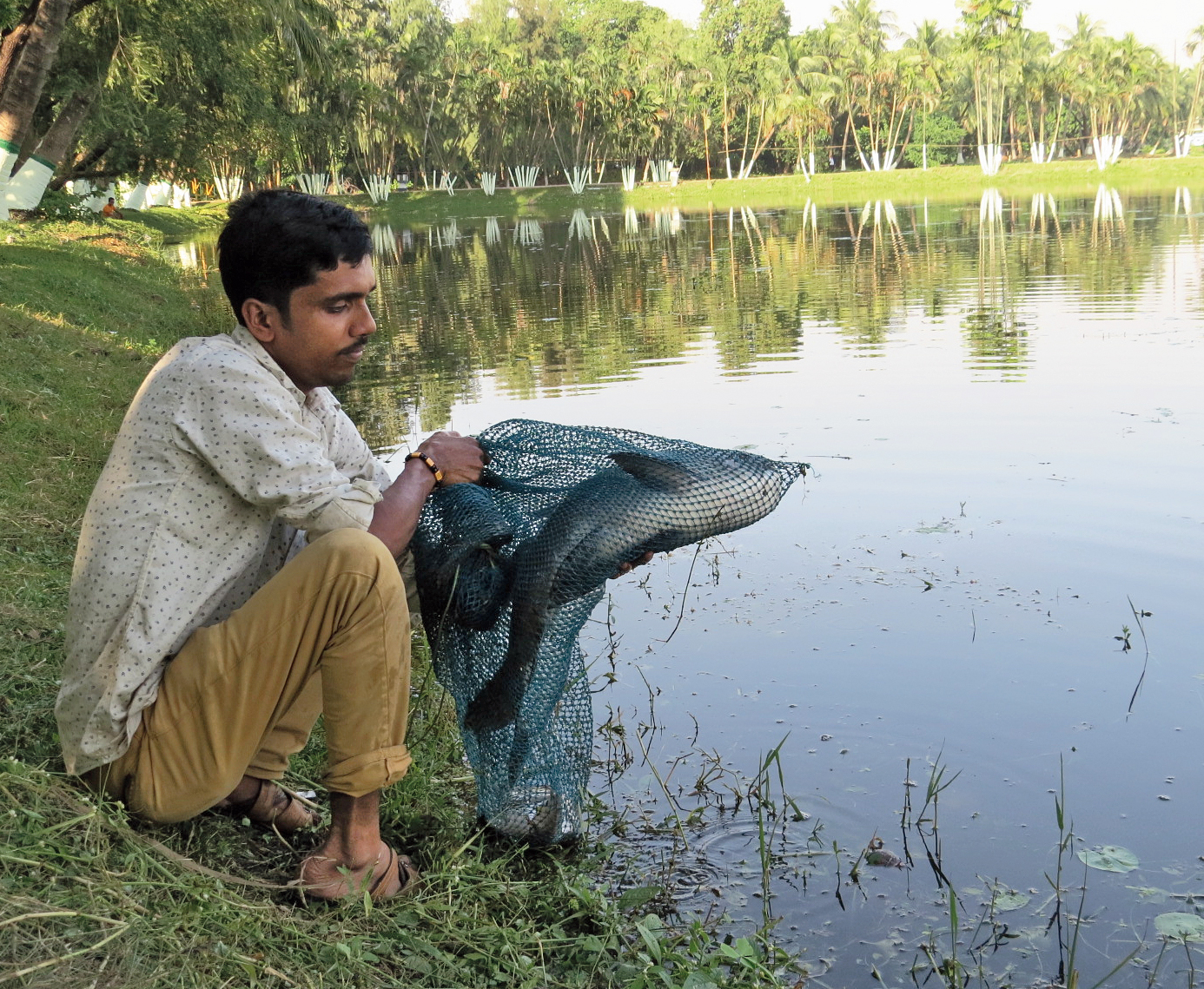 Ajay Mistri of Kestopur shows his catch on Friday