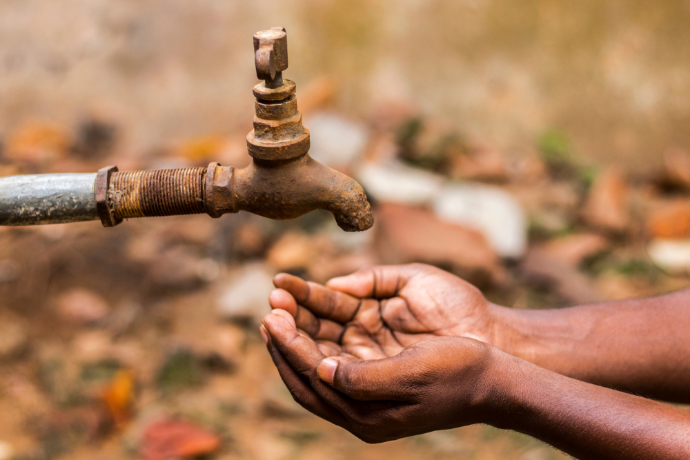 We have failed to put even basic systems in place to conserve water
