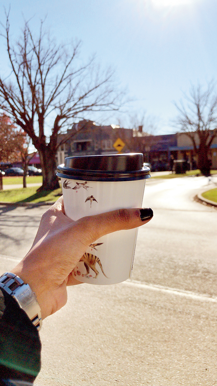 I fuelled up with a turmeric latte from the Mansfield Regional Produce Store in a recycled paper cup with an artist's work digitally printed on it.