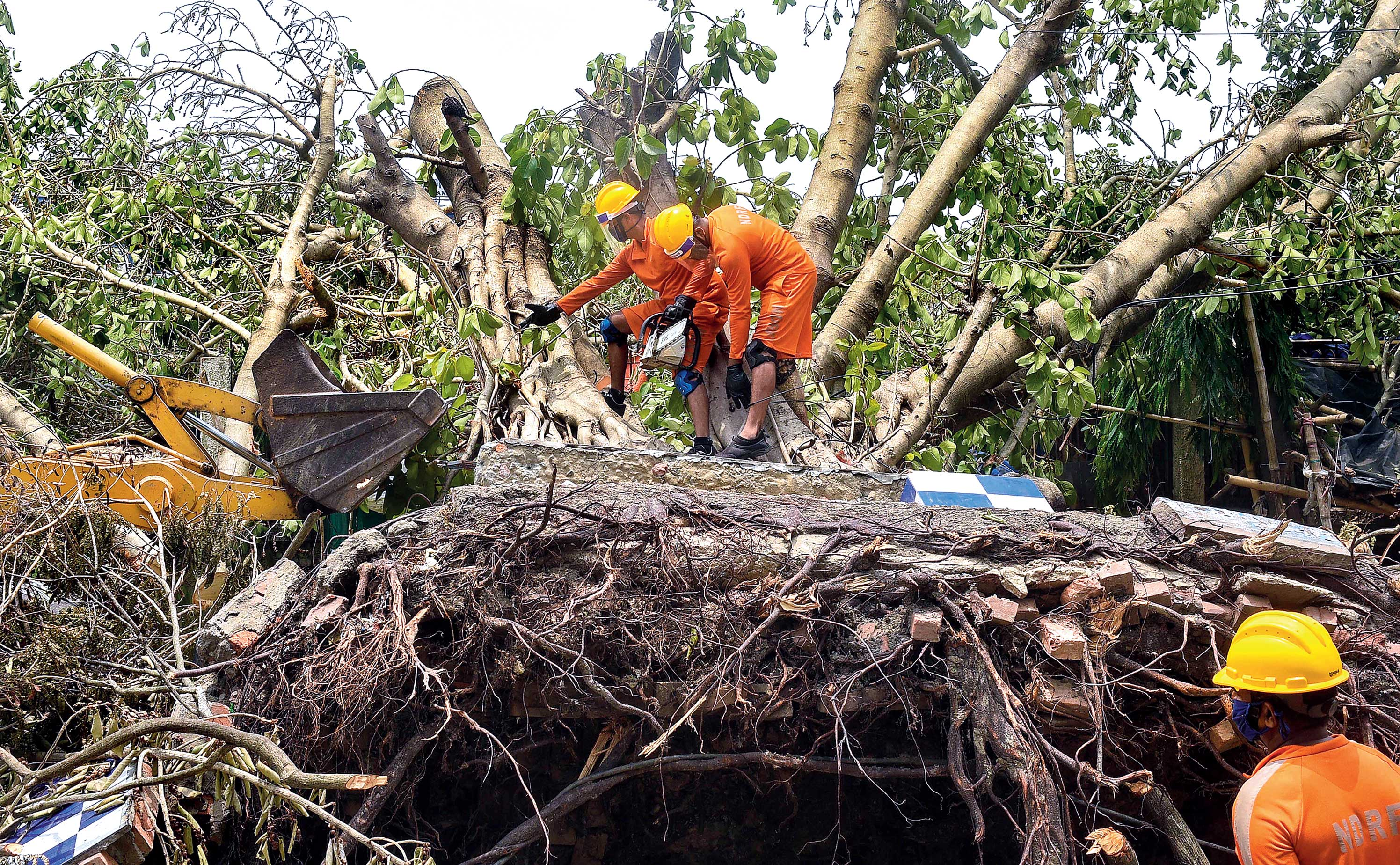 NDRF personnel work to clear an uprooted tree from a road in the aftermath of Cyclone Amphan in Calcutta.