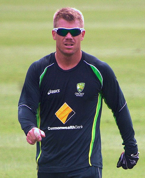 David Warner scored 692 runs in this year's IPL for Sunrisers Hyderabad and 647 runs in the 50-over World Cup in England as Australia reached the semi-finals.