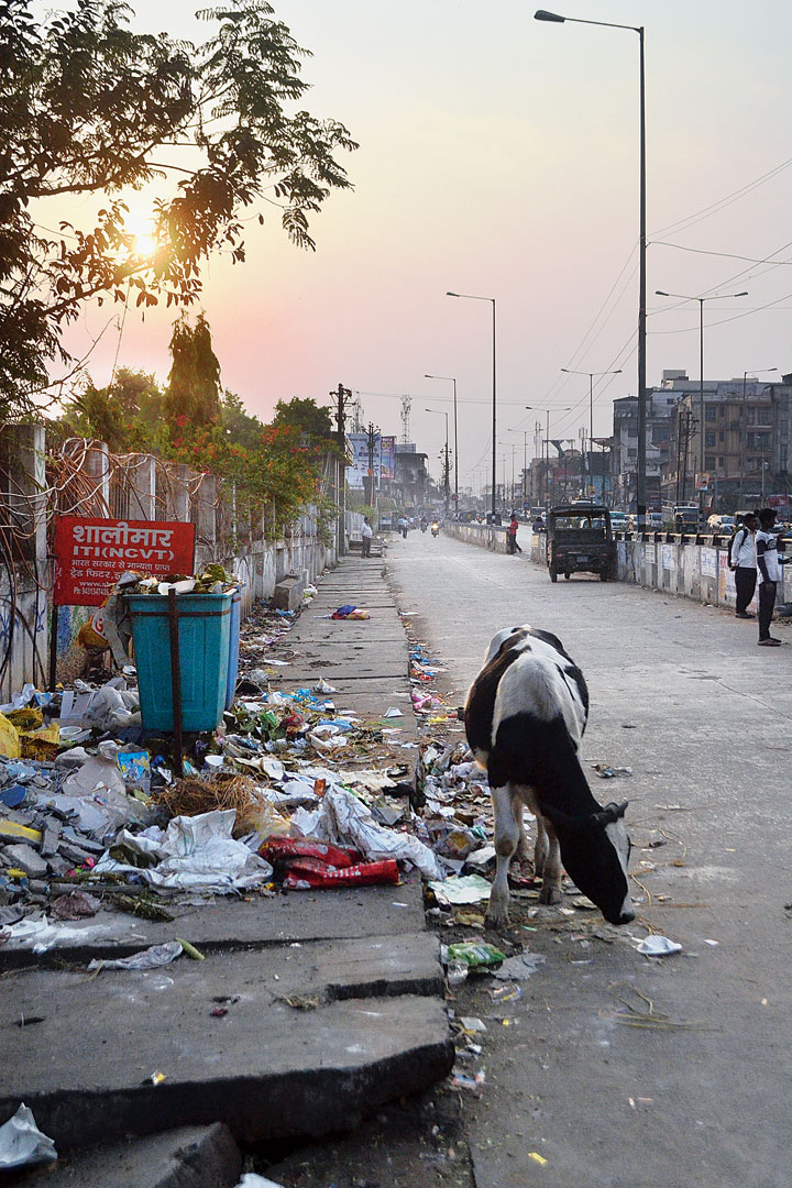 Municipal garbage strewn at a residential area in Adityapur on Monday.