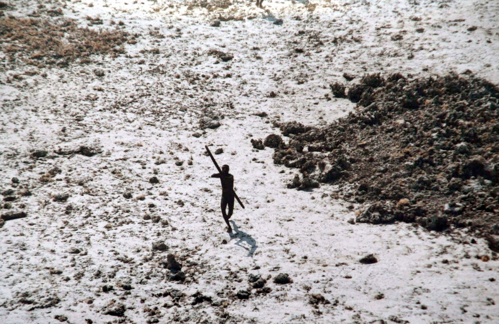 A December 2004 photo of a Sentinelese man as he aims his bow and arrow at an Indian Coast Guard helicopter flying over the North Sentinel Island in the Andaman Islands.