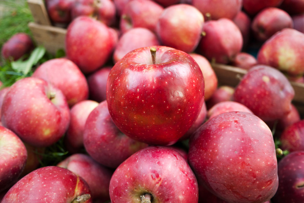 Officials said India would send a team to China to inspect the orchards and the apple processing units there