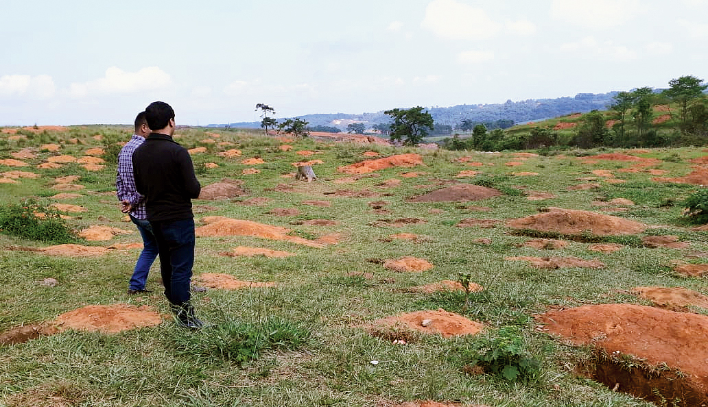 Meghalaya readies for record on World Environment Day