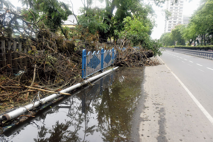 Free flow of water into the pits blocked by tree branches dumped along Chowringhee Road.