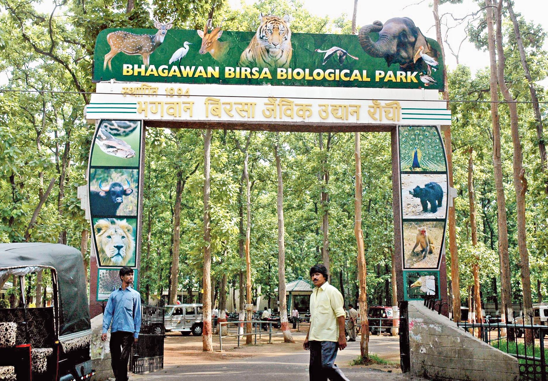 Birsa zoo in Ormanjhi