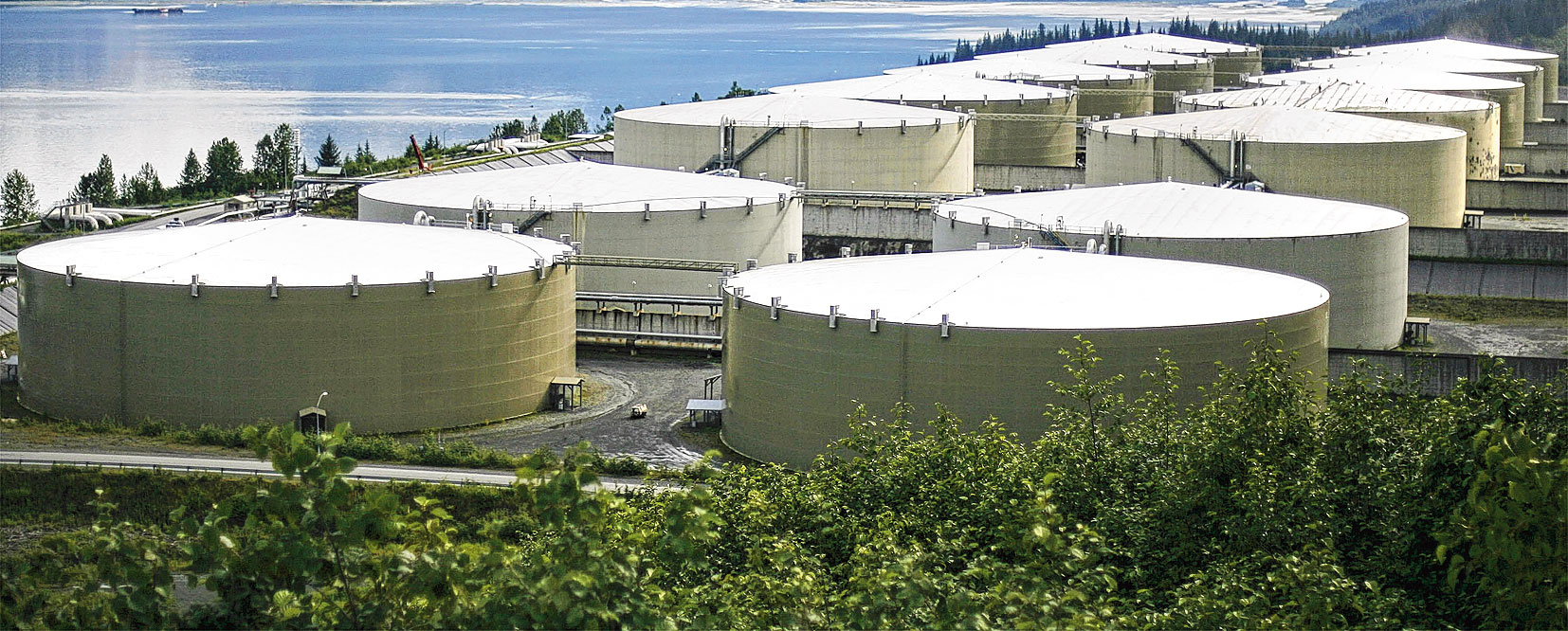 The government plans to call for bids for partnership in building strategic crude storages at Chandikhol in Odisha and Padur in Karnataka on a public-private mode.