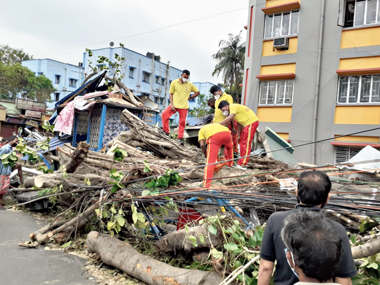As many as 30 teams from the Odisha fire and disaster services department were deployed across Calcutta on Monday to remove uprooted trees. They came following a request from the Bengal government