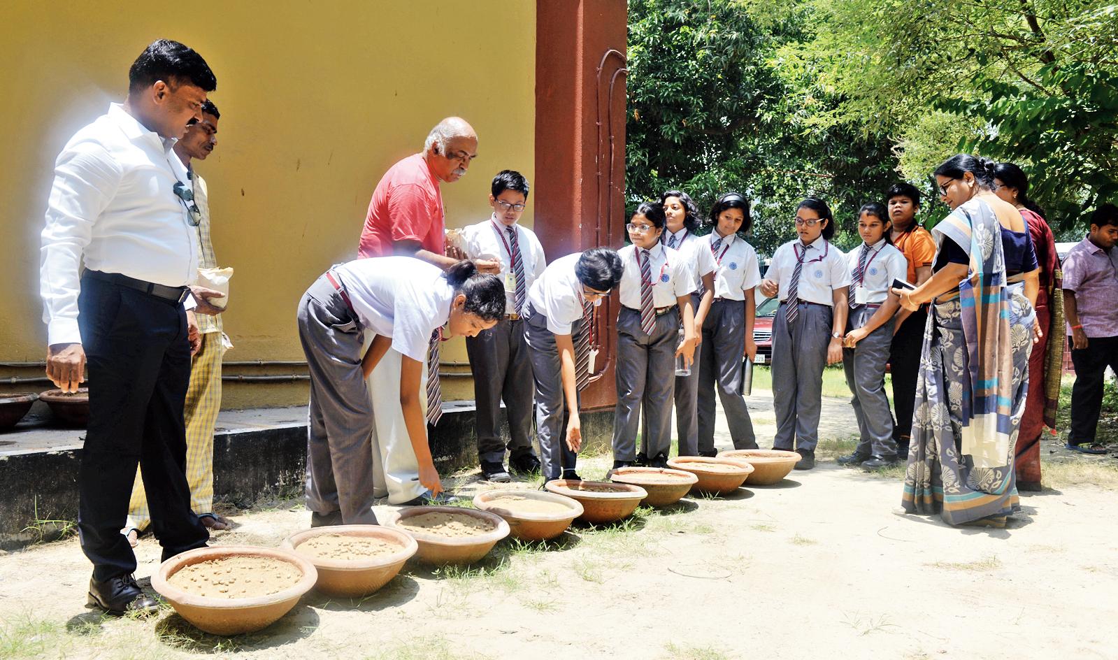 N Ramesh Chandran (in red) and students of Bharatiya Vidya Bhavan plant seeds of areca palm at the school's Salt Lake campus on Monday.