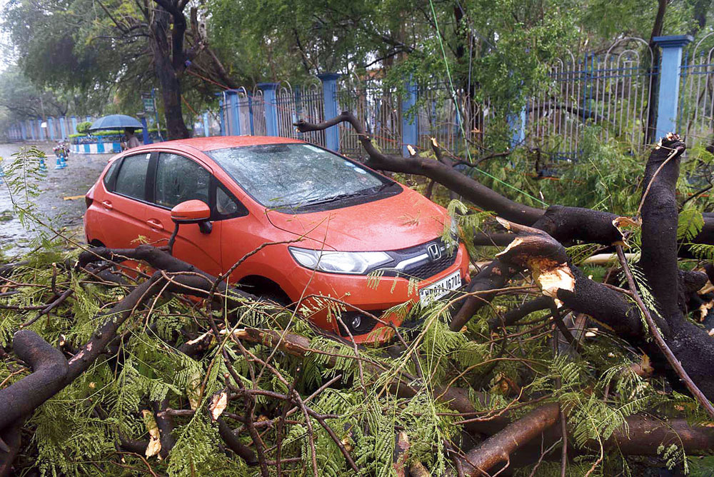 Trapped! A car stuck on Boroj Road near Rabindra Sarobar after it accidentally drove into branches of a tree that got uprooted during the squall on Monday.