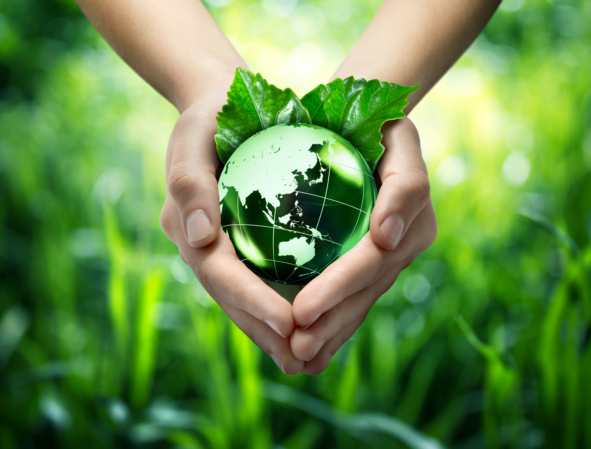 Earth Day Network has year-round programmes to plant trees, stop plastic pollution, protect biodiversity and, of course, celebrate Earth Day on April 22, to introduce new people to the movement