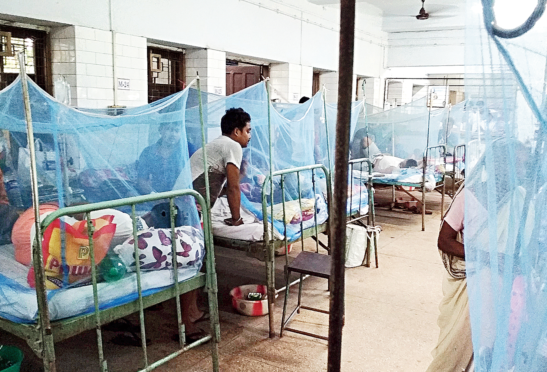 Ashoknagar State General Hospital in North 24-Parganas a sea of blue because of mosquito nets over beds.